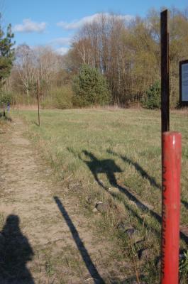 Hohes Gras auf dem Gelände des ehemaligen KZ Uckermark. Im Vordergrund eine rote Stange, die im Boden steckt.